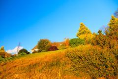 beautiful irish autumnal landscape scenery in co.cork, ireland. - stock photo