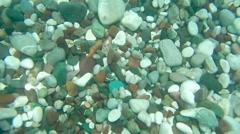 Underwater footage. Stones. Stock Footage