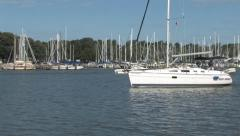 Sailboat Leaving Chesapeake Harbour Stock Footage