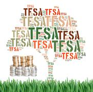 Canadian tax-free savings account concept word cloud Piirros