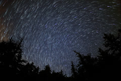 4K Astrophotography Time Lapse of Star Trails over Alpine Forest -Full Frame- Stock Footage