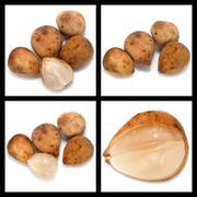 Series collage lansium demesticum fruit Stock Photos