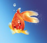 gold fish facing the viewer, with some water bubbles, on blue gradient backgr - stock illustration