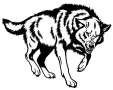 Wolf black white Stock Illustration