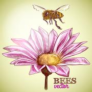 flying honey bee and blossoming flower background - stock illustration