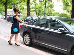 Brunet in black dress, approaching a black car Stock Photos