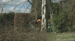 Arborist lumberjack cuts a wedge in the base of a tree 02 Stock Footage