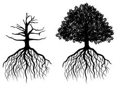 Isolated tree with roots Stock Illustration