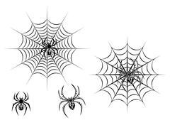 Black danger spiders on web Stock Illustration