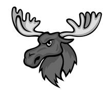 wild moose - stock illustration