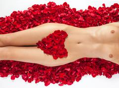 Part of the naked beautiful suntanned female body in petals of s - stock photo