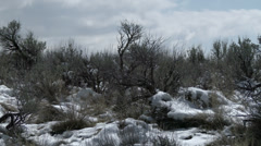 High Desert With Winter Snow Stock Footage