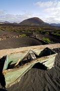 crops viticulture  winery lanzarote wall   cultivation barrel - stock photo