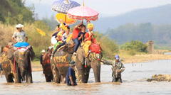 Parade Of Elephant Ordination in Thailand Stock Footage