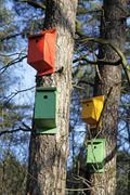 Four colourfull nesting boxes Stock Photos