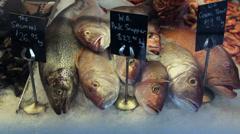 Snapper fish for sale, fish market, fremantle Stock Footage