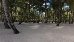 Republica Dominicana Saona palms Stock Footage