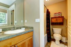 small bathroom in master bedroom - stock photo