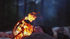 Small Campfire Burning in Slow Motion Stock Footage