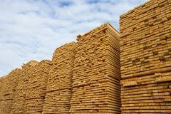 Rough cut lumber Stock Photos