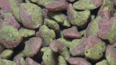 Cat Food, Kibble, Treats, Pets Stock Footage