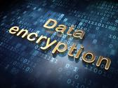 Stock Illustration of Protection concept: Golden Data Encryption on digital background