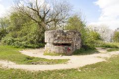 ww1 hill 60 bunker in the trench belgium world war. - stock photo