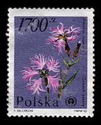 Poland-circa 1990:a stamp printed in poland shows image of the splendor of ca Stock Photos