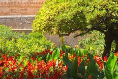 Alhambra Stock Photos