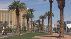 Las Vegas street car traffic palm tree sunny day commuter tourist travel hotel  Stock Footage