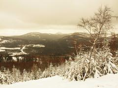 Winter morning on summit of rocky view point. Bended trees with freeze branches. Stock Photos