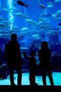 Huge aquarium in a hotel Atlantis in Dubai on the Palm islands Stock Photos