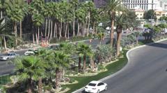 Traffic car street Caesar Palace Las Vegas strip palm tree tropical paradise USA Stock Footage