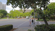 Stock Video Footage of pan across the park in cairns