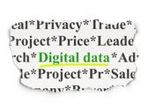 Stock Illustration of Data concept: Digital Data on Paper background