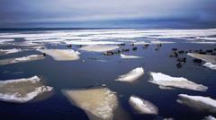Floating of Onego lake ice, Petrozavodsk Stock Footage