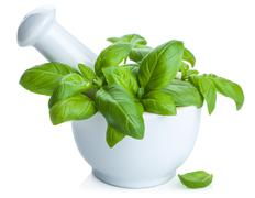 Basil in mortar isolated Stock Photos