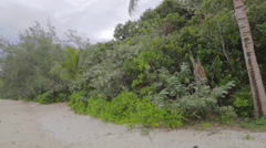 Pan of the beach in cape tribulation Stock Footage