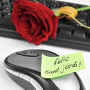 Felic sant jordi, happy saint georges day in catalan, and a red rose Stock Photos