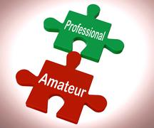 Professional amateur puzzle shows expert and apprentice Stock Illustration
