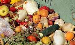 Damaged fruits and vegetables to use as fertilizer Stock Photos