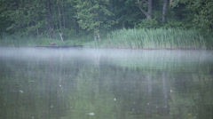 Fishing, nature, water. Stock Footage