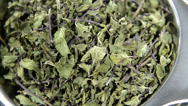 Stock Video Footage of heap of dried mint