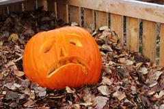 Pumpkin with sad face - stock photo