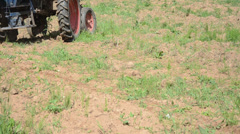Closeup machine tractor seeder equipment sow buckwheat seeds Stock Footage