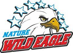 wild eagle - stock illustration
