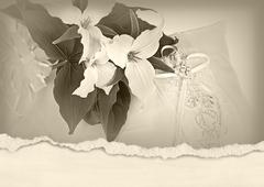 Trillium bridal bouquet - stock illustration