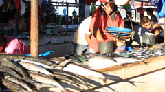 Sale of fish and seafood market in Coron Island, Philippines Stock Footage