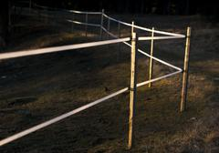 Electric fence in evening light Stock Photos