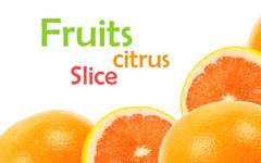 Citrus fruits Stock Illustration